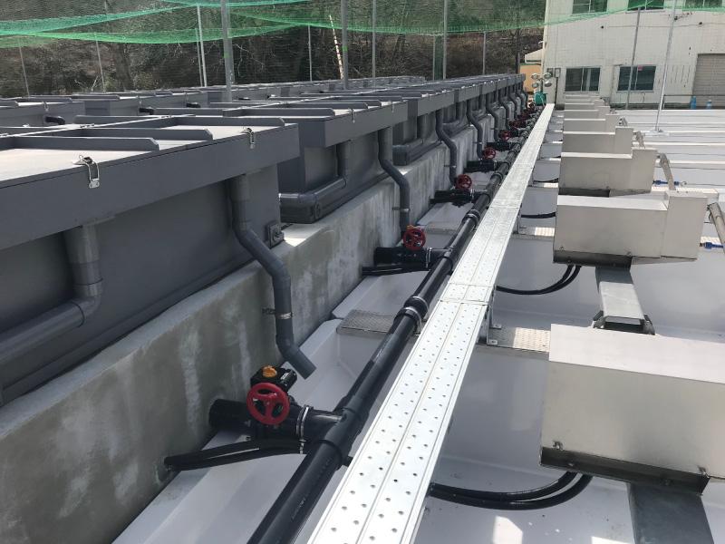 大槌川さけますふ化場(第1ふ化場)にFFU浮上槽を納入しました(42槽)。